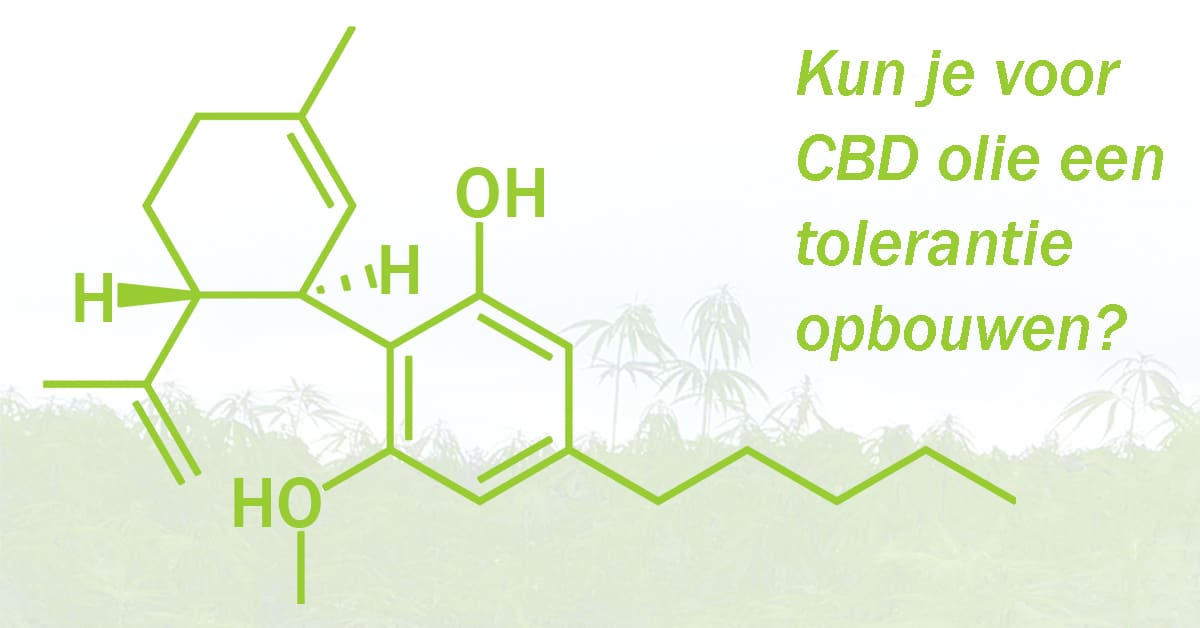 Kun je voor CBD olie een tolerantie opbouwen?