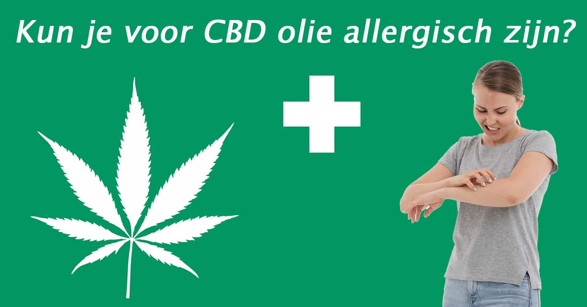 Kun je allergisch voor CBD olie zijn?