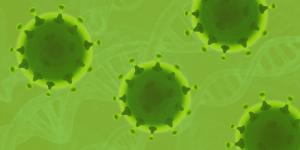 Coronavirus en CBD olie, kan CBD ondersteunen?